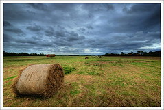 Phoenix Park - Dublin (Janek Kloss) Tags: park city ireland sky dublin phoenix grass photo fotograf photos cut dramatic tourist irland eire fotka loveit round cutting fotografia bales mapping tone attraction zdjecia irlanda mapped ierland balle j23  rotoballe zdjecie fotki irlandia   hwdp  lirlande fotosy    moli516 loveitalwayscomment5