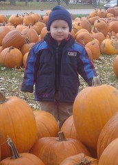 2008.10.25-Pumpkins.07b.jpg