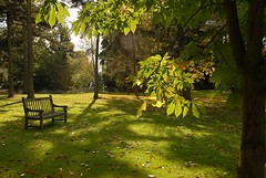 Autumn in Kew Gardens (picaddict) Tags: autumn england kewgardens london fall leaves explore botanicalgarden parkbenches mywinners anawesomeshot citrit ysplix photoexplore explorewinnersoftheworld rubyphotographer vosplusbellesphotos autumnimages2008 mygardenschool