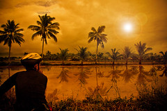 Sun Worship (jeridaking) Tags: trees light sunset sun mike reflections landscape mugs helmet warmth lensflare flare biker ricefield vignette ralph visayas paddies philippine leyte ormoc liloan bisaya bisdak ormocanon jeridaking matres fortheloveofphotography maglasang leytephotographer ormocphotographer
