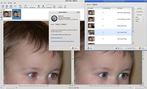 New kipi-plugin: Automatically remove red-eyes (in batch