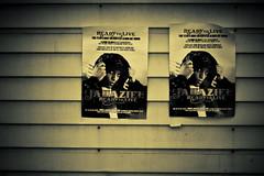 Jahaziel Posters @ Flavor Fest