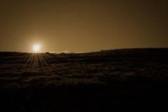 Estrella de la tarde (Nhelios) Tags: sunset paisajes landscape atardecer europa paisaje andalucia cadiz algeciras centenario exteriores campodegibraltar espaa otoo parquedelcentenario