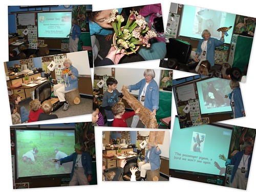 Career Week - Nancy Green Fish and Wildlife, Endangered Species Division