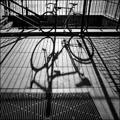 Torino 0132 (malko59) Tags: street urban blackandwhite torino shadows ombre turin biancoenero 500x500 superaplus aplusphoto artlegacy malko59 winner500 marcopetrino
