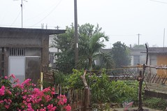 雨の伊良部島
