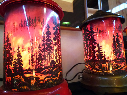 Forest Fires in Bottles