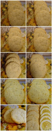 light box experiment: lemon poppyseed thins
