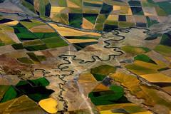 Rivière d'Ethiopie (Délirante bestiole [la poésie des goupils]) Tags: africa field river agriculture ethiopia afrique ethiopie