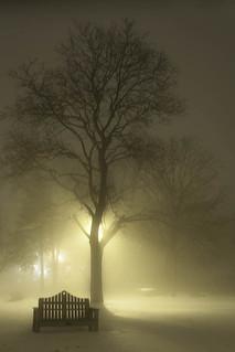 Illinois Fog