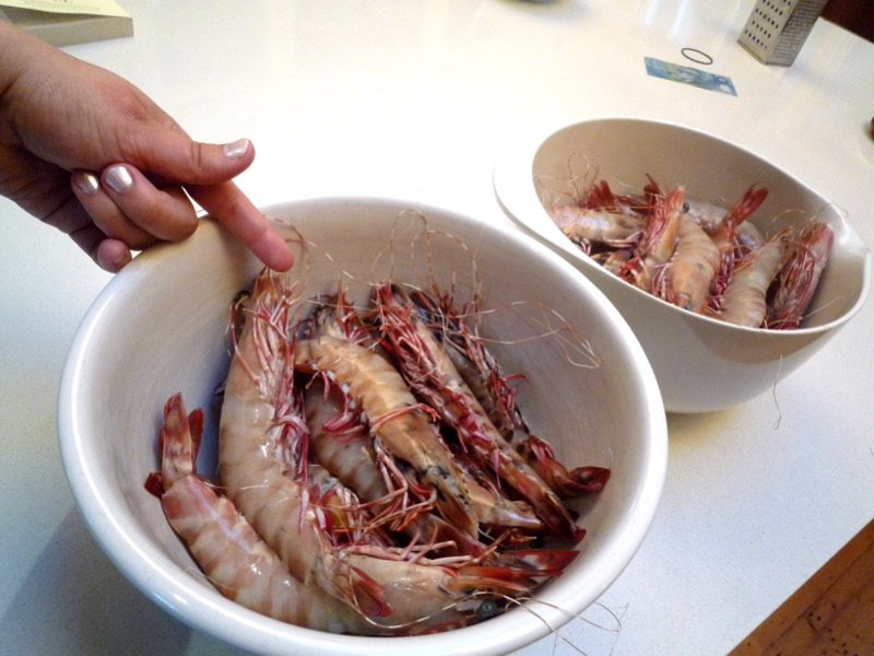 Monster prawns