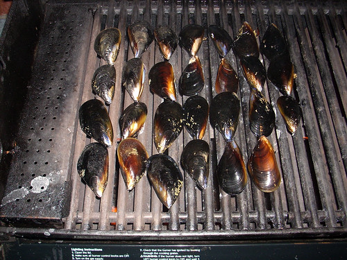 Mussels on the Weber