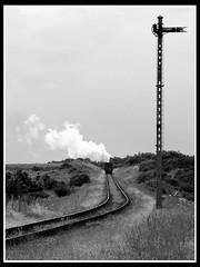 Into the Distance (Gerry Balding) Tags: england grass train track smoke norfolk railway steam rails signal eastanglia northnorfolkrailway weybourne northnorfolk mgn poppyline uksteam
