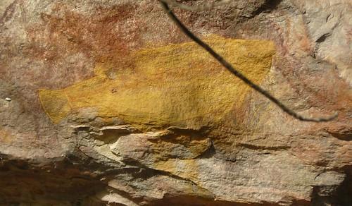 Australie 2009 Kakadu #26