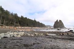 IMG_4380 (Bret Buck) Tags: ocean park beach canon coast washington nationalpark pacific boyscouts driftwood scouts olympic olympicnationalpark tidalpool bsa holeinthewall rialtobeach olympiccoast venturing t1i