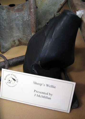 Sheep's wellie