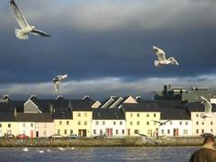 Galway Photos