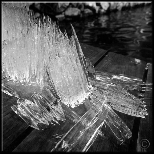 ~ ice ~ in black and white