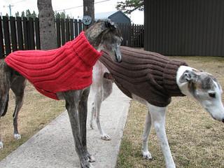 Ravelry: Side Button Greyhound Sweater pattern by Terri ...