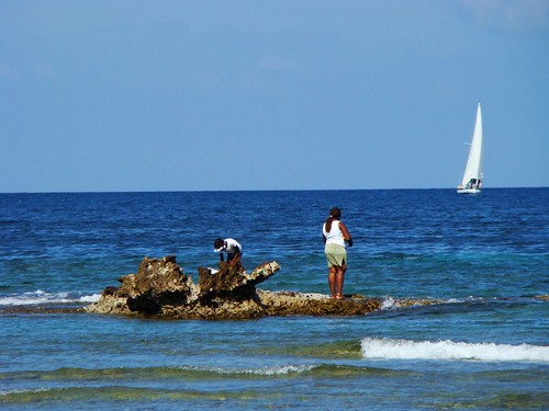 Tours of the coastal areas of Puerto Rico