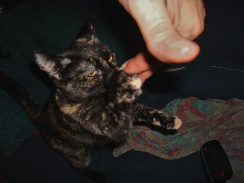Moni Grabs a Finger