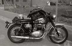 BSA 650 (iveka19) Tags: bw france classic vintage birmingham helmet motorbike biker lille barbour ilford fp4 armoury bsa motorrad pentaxmx rtro britishbike anglaise twin650
