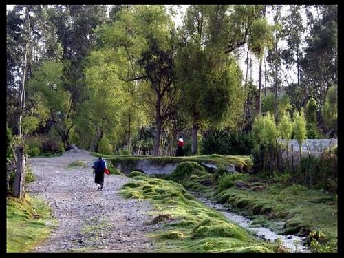 Ecuadorians-in-nature