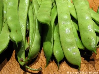 Roma Beans