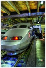 TGV Paris - Rennes (Edgar Gonzlez) Tags: en 3 paris france train tren nikon gare platform edgar mapping montparnasse arrondissement francia soe tone hdr rennes tgv voie gonzlez sncf mapped exp 14me andn blueribbonwinner photomatix garemontparnasse supershot tonemapped tonemapping 5photosaday d80 hdrphotography hdrphoto nikond80 afuoco anawesomeshot aplusphoto 1855mmf3556gii wowiekazowie edgargonzlez fotoguia 14mearrondissement montparnassebienvene voie3