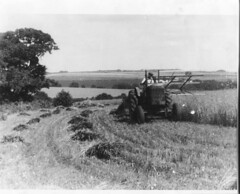 Our Dad harvest at the Dell (mohedges) Tags: old photos hedges