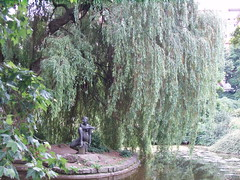 Weeping willow tree with statue