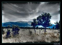 HAYEDO DE RIAZA (Segovia) (Charly JPG (Carlos Jos Prez)) Tags: espaa mountain de arbol eos spain segovia monte montaa espagne castilla riaza hayedo castillayleon ayllon sierradeayllon 40d halledoderiaza lapinillaestacion esquiesquisnowhdrhayaarbrearberoarbolcharlyjpgcanon