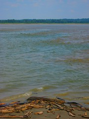 Confluence of the Ohio and Mississippi