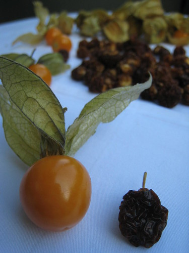 Fresh and Dried Physalis
