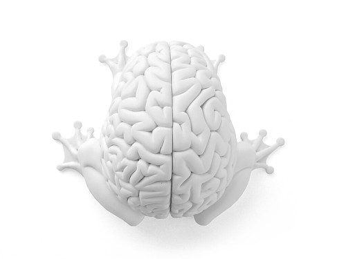 DIY Jumping Brain by Emilio Garcia - top view