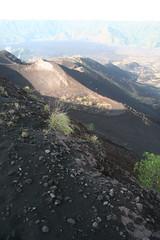 Volcano Soil (brianfarrell) Tags: bali indonesia 2008 batur