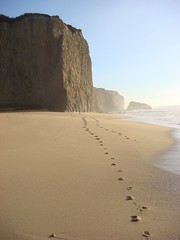 MartinsBeach_2007-107 (Martins Beach, California, United States) Photo