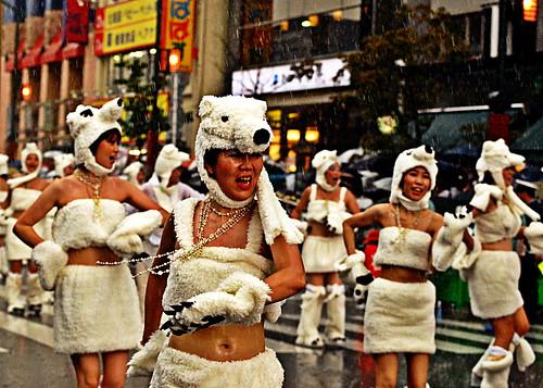 [Asakusa Samba] Kawaii Bears