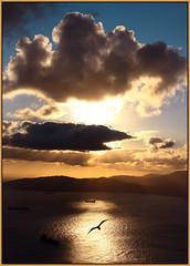 Atardecer en el Estrecho de Gibraltar desde el Peon (Sunset at the Rock) (*Cordelius) Tags: uk sunset sea sun color luz rock clouds canon contraluz dark atardecer mar colours view nubes cumulus ingles crepusculo gibraltar gaviota crepuscule roca algeciras estrecho rayos peon bluerib
