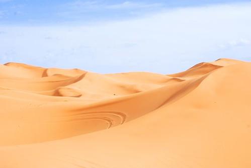 Sand View  Favorite.jpg