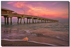 """Washed Ashore"" (Fraggle Red) Tags: ocean pink sunset beach water sand raw florida dusk hollywood northbeach cruiseship seashell atlanticocean canonefs1022mmf3545usm naturesfinest daniabeach blueribbonwinner adobelightroom msnoordam abigfave daniabeachpier browardco theperfectphotographer hollandamericacruiseline damniwishidtakenthat guasdivinas novavitanewlife"