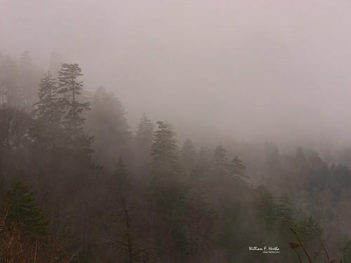 Old Smoky National Park