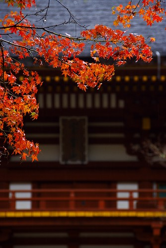 Muro-ji Temple of the autumn rain
