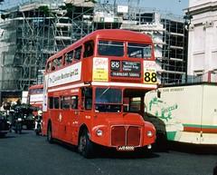 492-06 (Sou'wester) Tags: bus london heritage buses trafalgarsquare icon routemaster publictransport lrt lt psv parkroyal rm londontransport tfl route88 aec prv rml classicbus rml2520 jjd520d 90loncen 90lonout