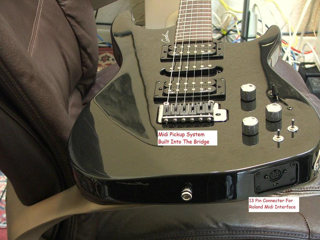 guitar midi pickup guitar midi cat playing violin. Black Bedroom Furniture Sets. Home Design Ideas