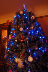 Morel's tree (Derek K. Miller) Tags: christmas xmas tree vancouver christmastree 2008 xmastree