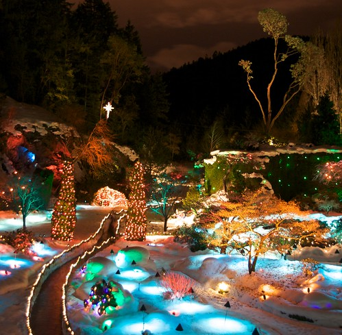 Sunken Garden as Christmas Fantasy