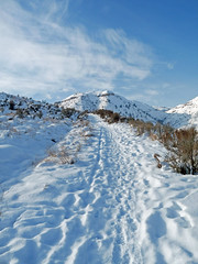 Initial trail, I carried my snowshoes here.