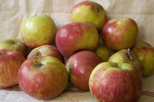 Apple pile