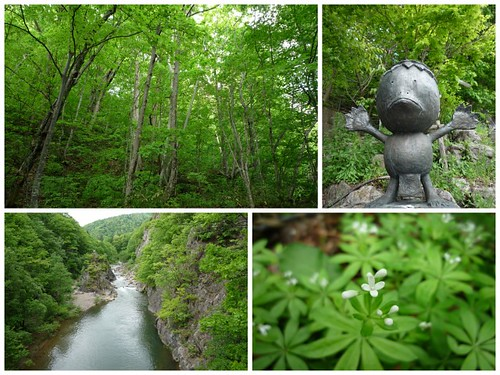 你拍攝的 090601-北海道Day 4_定山溪 & 札幌市區5。
